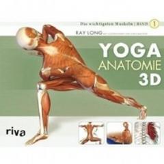 Yoga Anatomie 3D: Band 1: Die wichtigsten Muskeln